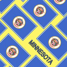 Smartphone Case - State Flag of Minnesota - Diagonal IV