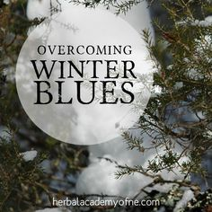 Your Solution to the Winter Blues   Herbal Academy of New England