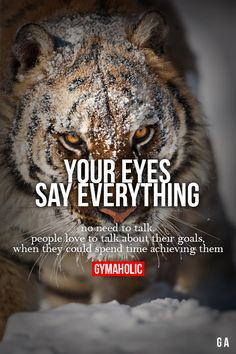 Your Eyes Say Everything  More motivation -> http://www.gymaholic.co/  #fit…