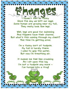 frog poem for kindergarten Frogs Preschool, Preschool Songs, Kids Songs, Frog Poem, Tadpole To Frog, Frog Theme Classroom, Kindergarten Poems, Frog Activities, Lifecycle Of A Frog