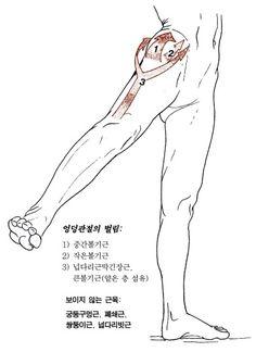 Anatomy Practice, Anatomy Study, Anatomy Drawing, Anatomy Reference, Pose Reference, Drawing Reference, Muscle Anatomy, Body Anatomy, Human Anatomy