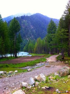 """ Kumrat Valley "" at Dir Chitral 