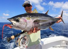 Nice Fly caught Yellow Fin Tuna caught by Mark Martin alongside a big group of Spinner Dolphins, Quepos, Costa Rica.  #jackpotsportfishing