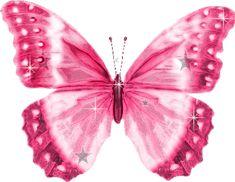Plaatjes vlinders