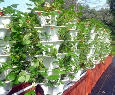 Texas-based EzGro Garden allows anyone, anywhere to grow crops vertically | Inhabitat - Sustainable Design Innovation, Eco Architecture, Green Building