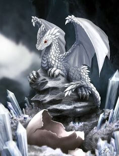 White Dragon Hatchling by dashase on DeviantArt Dragon Hatchling Egg Baby Babies Cute Funny Humor Fantasy Myth Mythical Mystical Legend Dragons Wings Sword Sorcery Magic Art Fairy Maiden Whimsy Whimsical Drache drago dragon Дракон  drak dragão