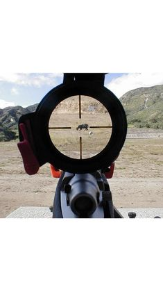Hunting Scopes, Hunting Rifles, Coyote Hunting, Rifle Scope, Firearms, Liberty, Guns, Weapons Guns, Political Freedom