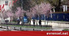 Edirne'de etkili kar yağışı - Evrensel Gazetesi