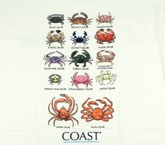 who's who in the crab world
