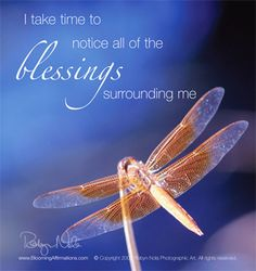 I take time to notice all of the blessings surrounding me. ♥ Positive affirmation cards inspired by the healing power of nature by Robyn Nola.