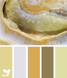 agate golds; this has the exact color of our walls and veryyy close to the color of my couches, perf for the living room! LOVE THIS SITE! Pick your color and it matches you with pallete ideas!