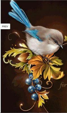vogels met blauwe staart