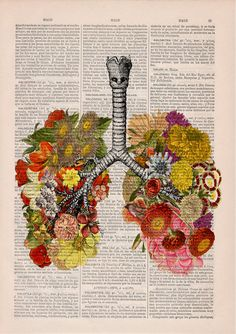 Flowery Lungs human Anatomy Print on dictionary. Anatomy by PRRINT