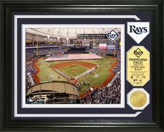 Tampa Bay Rays Single Coin Stadium Photo Mint