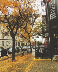 Brooklyn, New York   ☔️