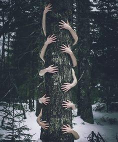 """""""Secret Window, Secret Garden"""": Dreamlike Photography By Shaina Sterrett"""