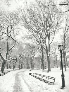 New York Winter #cute #photography