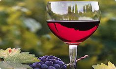 Bus Charters Perth provides Bus, Maxi Taxi and Mini Bus Hire Perth. If you are looking for Wine Tours Perth, Perth Maxi Taxi, Bus Charter Perth and Perth Airport Shuttle then you have come to the right place.  http://www.buschartersperth.com.au