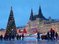 How Christmas Is In Other Countries? 11 Great Pictures of Christmas From Around The World Days Until Christmas, Before Christmas, Christmas And New Year, Christmas Light Displays, Christmas Tree Ornaments, Christmas Lights, Other Countries, Countries Of The World, Birthplace Of Jesus