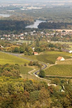 Burgundy France, Before I Die, Ancestry, Golf Courses, Vineyard, Escapade, Creatures, Earth, River