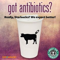 Monsanto's GMOs, antibiotics and Starbucks?! A factory-farmed cow's diet consists mostly of Monsanto's GMOs. If you don't want GMOs and antibiotics in the food supply, this is your issue! Raise your voices against Monsanto milk used at Starbucks on their Facebook page here: https://www.facebook.com/Starbucks Then take action and sign our petition: http://gmoinside.org/starbucks #GMODairy #WTStarbucks #StopMonsanto #GMOMilk