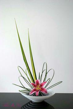 175 best modern flower arrangements images in 2019 floral rh pinterest com