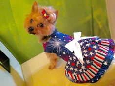4th of July Red, White and Blue Dog Dress