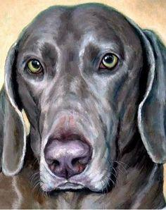 Weimaraner Dog Art 8x10 Print of Original Painting by DottieDracos #DogsInArt