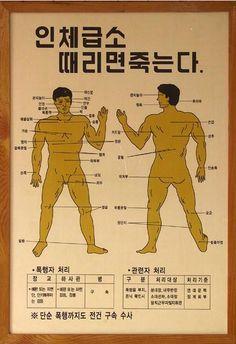 야근중이다 신안난다.라는 이유로 답글은 나중에 Health Diet, Health Care, Health Fitness, Sense Of Life, Medical Anatomy, Korean Language, Love Memes, Calisthenics, Science And Nature