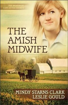 An old box containing two locks of hair and an old letter regarding property in Switzerland, along with a burning desire to learn about her biological family,lead nurse-midwife Lexie Jaeger from her home in Oregon to the heart of Pennsylvania Amish country. (Amish Fiction--Amish Midwife by Mindy Starns Clark)