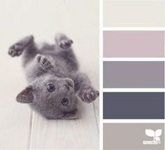 Черпаем вдохновение цветом в мире котиков. Часть 2 - Ярмарка Мастеров - ручная работа, handmade
