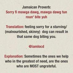 Sorry fI mawga dawg, mawga dawg tun round bite yuh. Jamaican Proverb, Jamaican sayings, Patois Jamaican Slang, Jamaican Quotes, Jamaica Travel, Jamaica Jamaica, Jamaican Proverbs, Appreciate Life Quotes, Skinny Dog, Wise Quotes, Wise Sayings