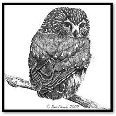 'Saw Whet Owl' by Renee Fukumoto