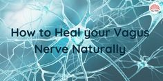 Vagus Nerve Stimulator, Esophageal Spasm, Neurocardiogenic Syncope, Brain Stem, Muscle And Nerve, Plantar Fasciitis, Health And Wellness