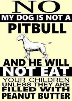 People commonly get  pit bulls confused with English Bull Terriers.. its only like a $1000.00 dollar difference but whos counting ;)