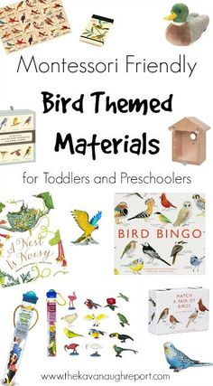 Montessori Friendly Bird Themed Materials. Here are some materials for toddlers and preschoolers to explore birds.