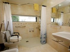Toilets bathroom sinks and sinks on pinterest for Bathroom for disabled plan