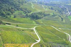 Grape Vines, Jura Medieval Town, Alps, Grape Vines, Waterfall, France, Explore, Outdoor, Law School, Outdoors