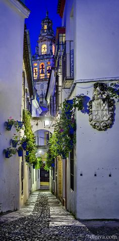 Córdoba, Spain >>> How much would you love to stroll down this lane at night?