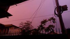 Purple Afternoon