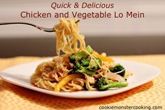 'Quick & Delicious' Chicken and Vegetable Lo Mein | Recipe Devil