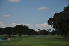 Orange Tree Golf Club lies among the best shopping and dining that Central Florida has to offer, right at the heart of Dr. Phillips.