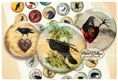 Buttons Pinback Digital Printable Images for Button machine 1.313 inch Flatback Buttons Flair Buttons Clip art Raven b45 - pinned by pin4etsy.com