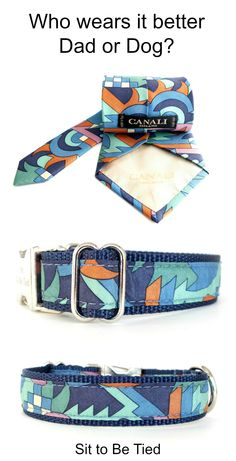 #Up-cycled fashion for #dogs. Blue and green mod dog collar. A unique dog collar for male dogs in fabulous colors.