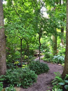 garden-paths_13.jpg #GardenLandscapingTrees