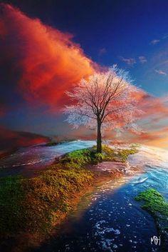 Un coucher de soleil merveilleux