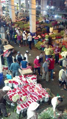 Flowers, flowers and more flowers. Jamaica Market.  Available in our Ciudad de Mercados tour : http://patadeperrodf.com/walking-tours/ciudad-de-mercados/  Glimpse of Mexico City tour: http://patadeperrodf.com/walking-tours/a-glimpse-of-mexico-city/  And Antique market experience http://patadeperrodf.com/walking-tours/the-antique-market-experience/