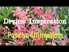 Divine Inspiration | Positive Affirmations | Love Energy | Isochronic To...