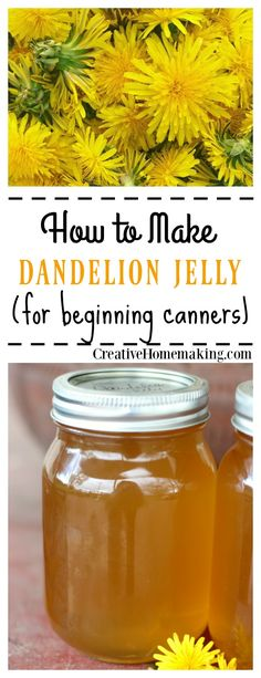 Dandelion Jelly Easy recipe for canning homemade dandelion jelly. Tastes just like honey!Easy recipe for canning homemade dandelion jelly. Tastes just like honey! Jelly Recipes, Jam Recipes, Canning Recipes, Drink Recipes, Canning Tips, Dandelion Recipes, Dandelion Jam Recipe, Dandelion Jelly, Dandelion Flower