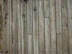Google Image Result for http://free-textures.got3d.com/architectural/free-wood-textures/images/free-wood-texture-002.jpg